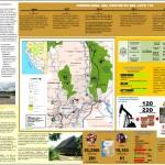 infografia-selva