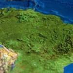 Las plantaciones de palma aceitera son relativamente nuevas en Perú y otros países de América Latina.