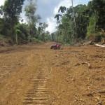 Cuestionada carretera en zona de amortiguamiento del Manu y Amarakaeri es promovida por el Gobierno Regional de Madre de Dios. (Foto: Archivo)