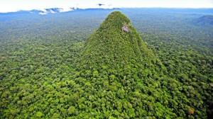 La Sierra del Divisor cuenta con una riqueza biológica única en el país, concentrada en las cadenas montañosas que alberga, y además provee de importantes recursos hídricos.(Foto: Dante Piaggio /El Comercio)