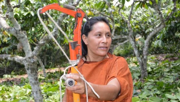 Gladys Chimanga en pleno proceso de cultivo y cosecha del cacao en el Vraem.