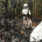 El Gobierno aprobó la declaratoria de emergencia en Morona, Loreto, luego de que un informe del Indeci concluyó que el desastre demanda la adopción de medidas urgentes. (Alessandro Currarino / El Comercio)