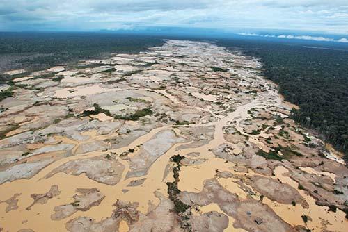 Se registró mayor indice de deforestación en las regiones conformadas por Ucayali, Huánuco y Madre de Dios.