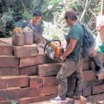 Depredadores. Inteligencia policial estima que hay tres mafias de la madera operando aún en Ucayali con apoyo de policias y funacionarios corruptos.