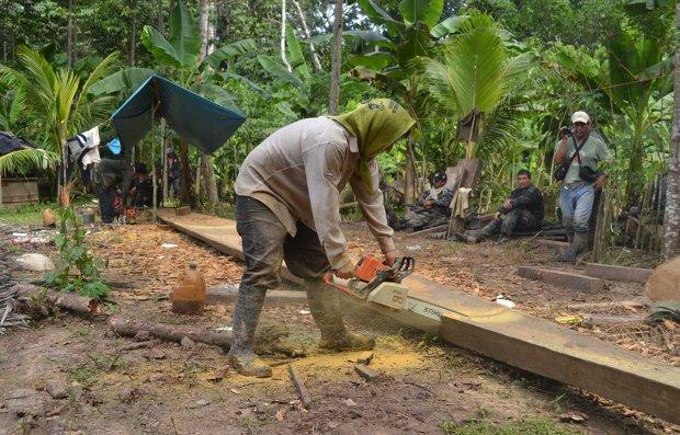 Campamento maderero ilegal fue intervenido en Ucayali.Foto: Cultura.gob.pe