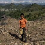 Un niño trabaja los cultivos cercanos a la hidroeléctrica Renace, en Cobán (Guatemala). PEDRO ARMESTRE
