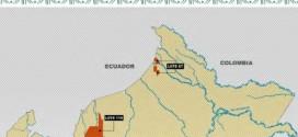Estudio sobre la actuación de las empresas petroleras Perenco en el Lote 67 y Maurelet PROM-Pacific Rubiales Energy en el Lote 116