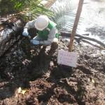 Especialistas del OEFA supervisan las áreas afectadas por los derrames de petróleo reportados en Urarinas, Loreto.