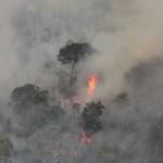 """""""El fuego está destruyendo selva preamazónica y amenaza con aniquilar a indígenas aislados por segunda vez en menos de un año."""" © INPE"""