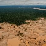 La Pampa: en la zona de amortiguamiento de la Reserva Nacional Tambopata. Foto: Tomás Munita para The New York Times.