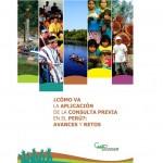 segundo-reporte-consulta-previa-caaaap