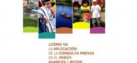 ¿Cómo va la aplicación de la Consulta Previa en el Perú?: Avances y retos