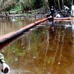 Los derrames de crudo han causado graves daños al ecosistema. Foto: La República.