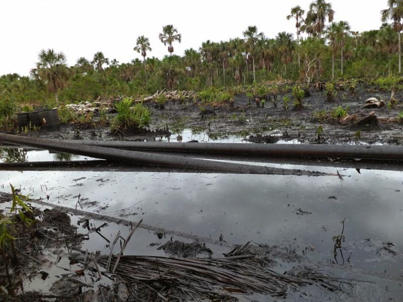 Diciembre de 2013. Derrame de Pluspetrol en el Lote 8, dentro de la Reserva Nacional Pacaya Samiria. Barclay advierte que en el Lote 1AB, que opera la misma empresa, esta construyó un colegio a sabiendas de que algunos focos de contaminación por petróleo se encontraban a menos de 200 metros de la zona. Foto: Acodecospat