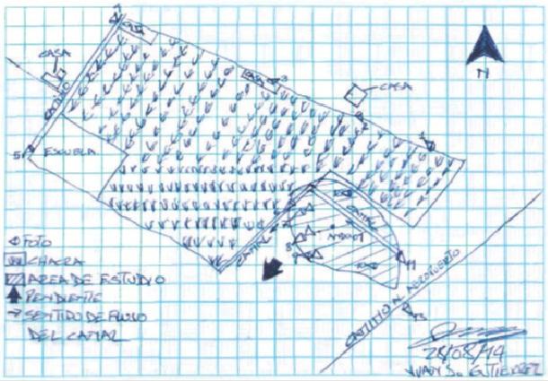 Figura 4. Croquis del Sitio ANDO01 (Informe de Identificación de Sitio Pluspetrol Norte S.A., Lote 1AB Loreto, Perú. Sitio ANDO01, p. 4-2).
