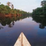 AmazoniaFotoAndina