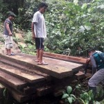 Foto: Serfor/madera incauta a los invasores.