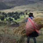 Mujeres indígenas no tienen acceso a la propiedad de la tierra. Foto: Difusión.