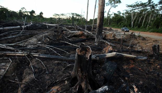 Las zonas de la selva donde hay más deforestación son también algunas de las más pobres del país (Foto: Rolly Reyna)