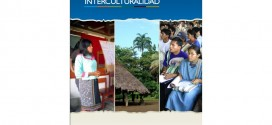 Gestión pública e interculturalidad