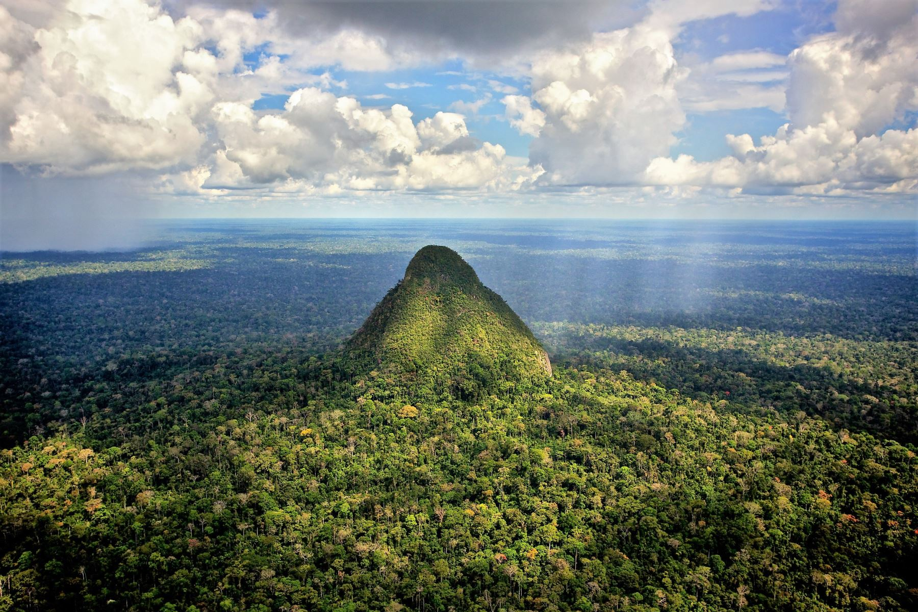 Sierra del Divisor es uno de los territorios que habita el pueblo kakataibo. Foto:  ANDINA