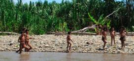 Fujimorismo aprueba proyecto que provocaría desaparición de pueblos en aislamiento