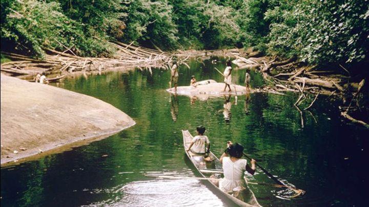 En realidad el proyecto beneficiaría a taladores ilegales, al narcotráfico y no a los pueblos indígenas como se pretende justificar, denuncian. Créditos: Foto: Sol de Pando - vía Sophimania.pe