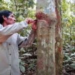 Los indígenas son cruciales para la conservación de la Amazonía. MEY LIN CHIAN (EBA AMAZONÍA, PNUD)
