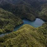 Selva peruana. Foto: EFE
