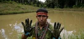 La REPAM lleva a la ONU dos casos de vulneración de derechos en la Amazonía