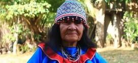 El CAAAP condena el asesinato de Olivia Arévalo Lomas, defensora de la cultura shipibo-konibo, y exige su investigación inmediata