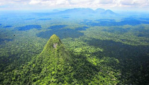La Sierra del Divisor es el último parque nacional creado en el país; tiene una extensión de 1 millón 300 mil hectáreas. Las áreas naturales de la Amazonía evitan la expulsión de GEI y generan oxígeno. Foto: Dante Piaggio