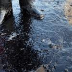 """""""Un sector de aproximadamente 9 metros de tubería se encuentra expuesta en la margen derecha del río Pastaza debido al crecimiento atípico de su caudal, hecho fortuito que originó una fisura en la tubería"""", informó la empresa en un comunicado.(Getty/referencial)"""