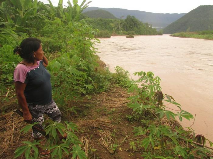 Verónica García de la comunidad de Santavankori en lo que fue antes un yucal. Foto: CAAAP Selva Central
