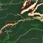 Zona de minería aurífera en Madre de Dios. Datos: Planet, UMD/GLAD, MINAM/PNCB. (Imagen: MAAP)