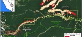 Minería ilegal de oro destruye en la selva área equivalente a 2.300 canchas de fútbol
