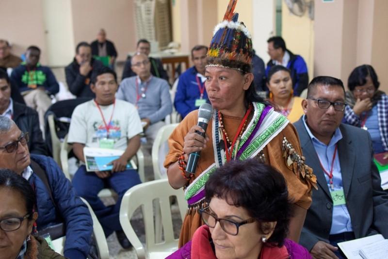 Norma Sánchez Chapay, del pueblo Asháninka. Foto: CAAAP