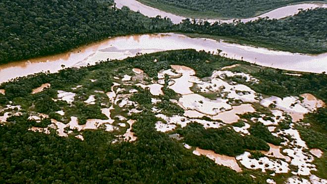 Destrucción. Esta nueva zona de explotación minera casi llega al río Malinowski. El mercurio y el cianuro que usan los mineros envenenan el afluente.