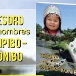 nscribir sus nombres originarios en su Documento Nacional de Identidad (DNI) y otros documentos es ahora posible para más de 35,000 peruanos de la etnia amazónica shipibo-konibo, gracias al listado de nombres que consigna el Registro Nacional de Identificación y Estado Civil (Reniec).
