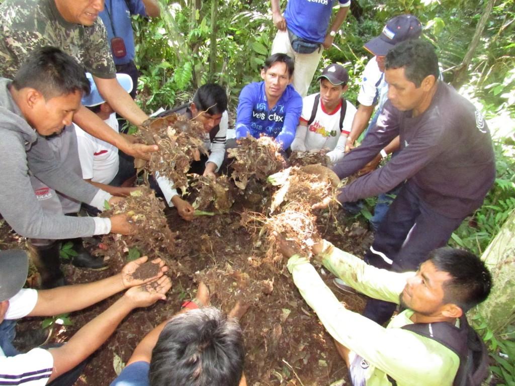 Se buscan e implementan estrategias de recuperación de suelos para la agricultura y en beneficio de la alimentación de las familias. Foto: Pastoral de la Tierra.