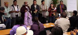 LEY DE CAMBIO CLIMÁTICO: Ministerio del Ambiente obstruye Consulta Previa a organizaciones