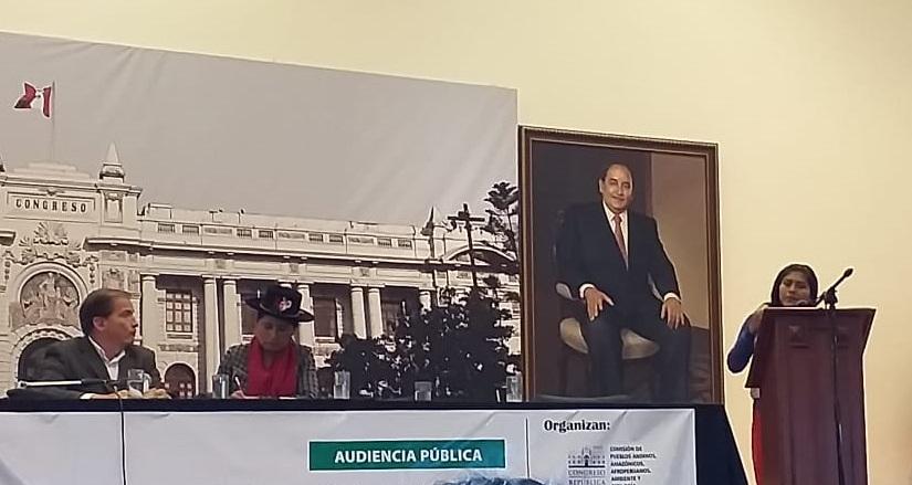 La lideresa Teresa Cuñachi, durante su participación en el Congreso de la República. Foto: CAAAP