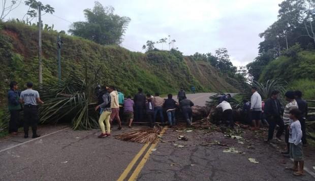 Con árboles y llantas quemadas fue bloqueada la vía. Ministerio Público en coordinación con la Policía Nacional, exhortaron a los manifestantes realizar la protesta en forma pacífica. (Foto: Daniel Carbajal)