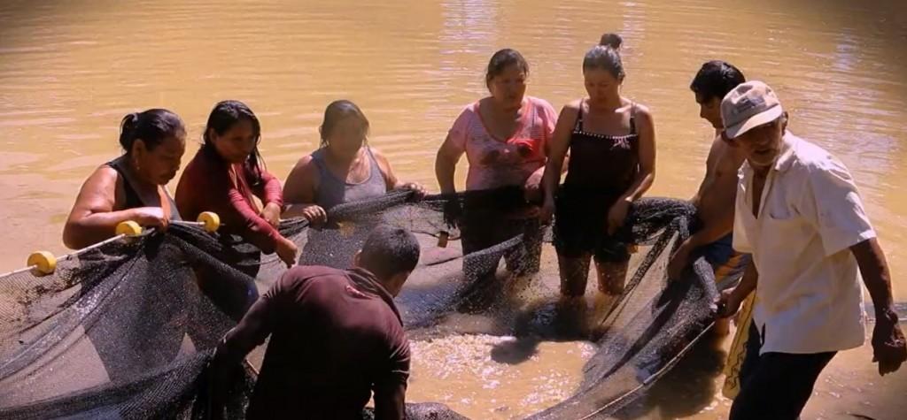 A diario, las mujeres prioritariamente son las que se encargan de vigilar los peces para alimentarles y evitar que otros animales les coman. Foto: Cáritas Madre de Dios