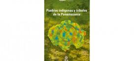Situación de los derechos humanos de los pueblos indígenas y tribales de la panamazonía : Aprobado por la Comisión Interamericana de Derechos Humanos el 29 de septiembre de 2019