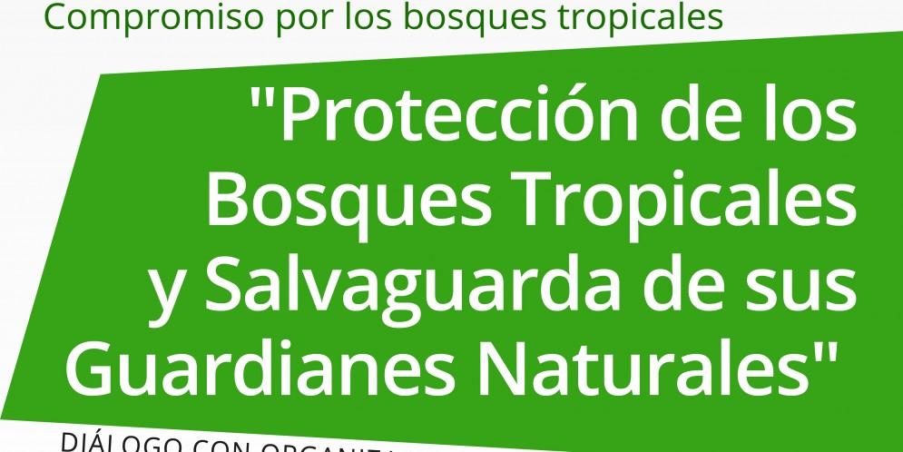 Elecciones 2020: Piden a candidatos incluir propuestas legislativas para proteger la Amazonía Peruana