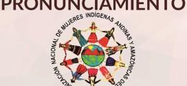 ONAMIAP: «¿Para cuándo la representación legislativa de los pueblos indígenas?»