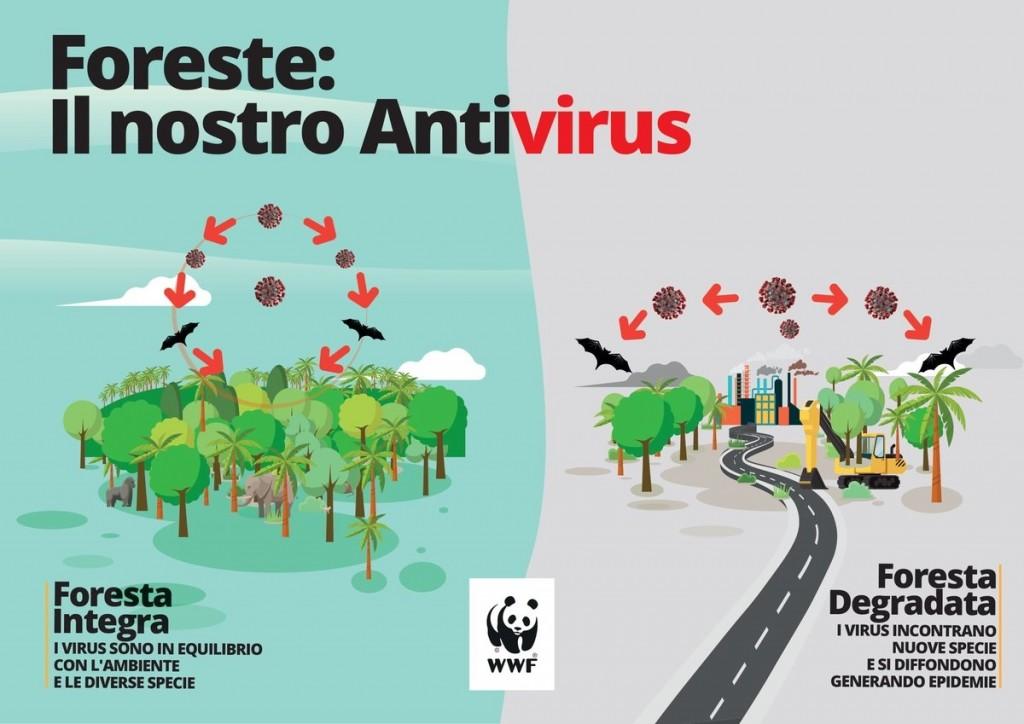 Ilustración 1- Bosques: Nuestro Antivirus (WWF Italia, 2020)