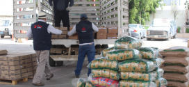 Cáritas atiende aproximadamente a 40 mil familias vulnerables a nivel nacional