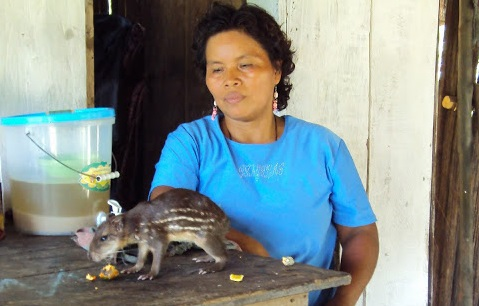 Sra. Magna Manihuari, comunidad kukama de Triunfo, río Urituyacu. Foto: Manolo Berjón, 2013